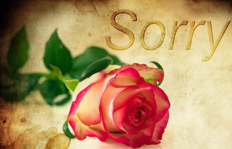 Pedir perdón de forma efectiva
